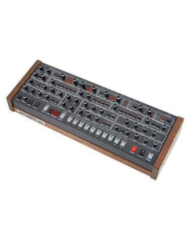 Dave Smith Instruments Prophet 6 Module  - Centre Chopin