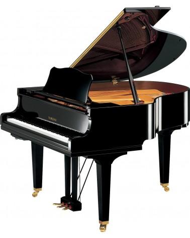 GC1 Silent SH2 - YAMAHA  - Centre Chopin