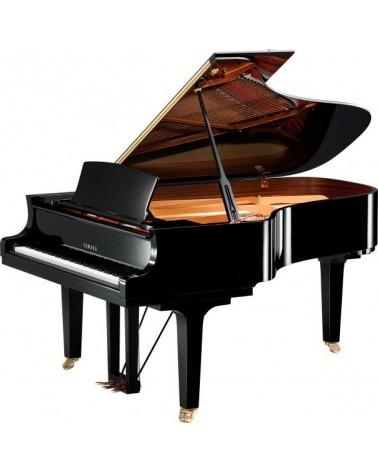 C6X - YAMAHA  - Centre Chopin